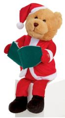 PREMIER MB171395  28Cm Animated Story Telling Bear